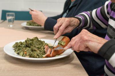 hrana stariji