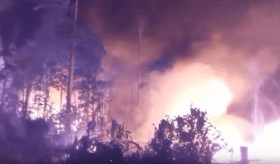požar amazonska prašuma